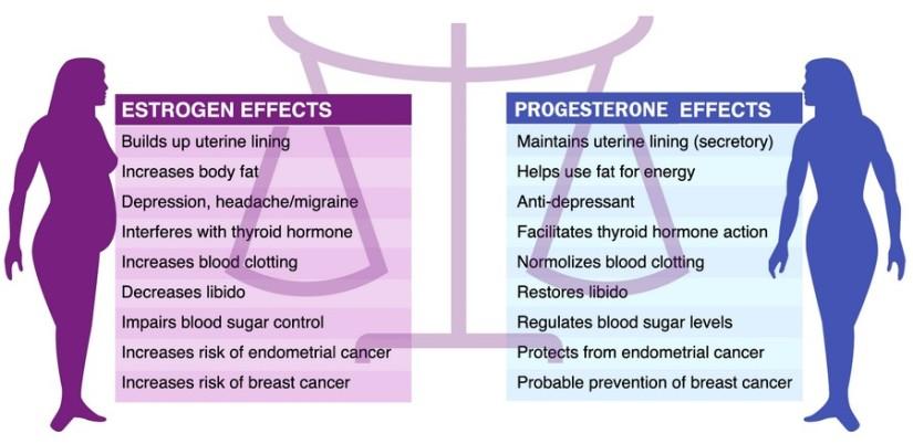 EstrogenDominance